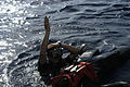 US Navy 050613-N-6482W-027 Search and rescue swimmer, Electronics Technician 3rd Class Thomas Mayes, gives the signal to extract and awaits assistance during a man overboard drill.jpg