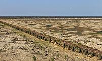 Uniek door eb en vloed steeds wisselend kweldergebied. Locatie, Noarderleech Provincie Friesland 26.jpg