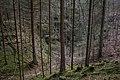 Unterwald-Ponor 10.jpg