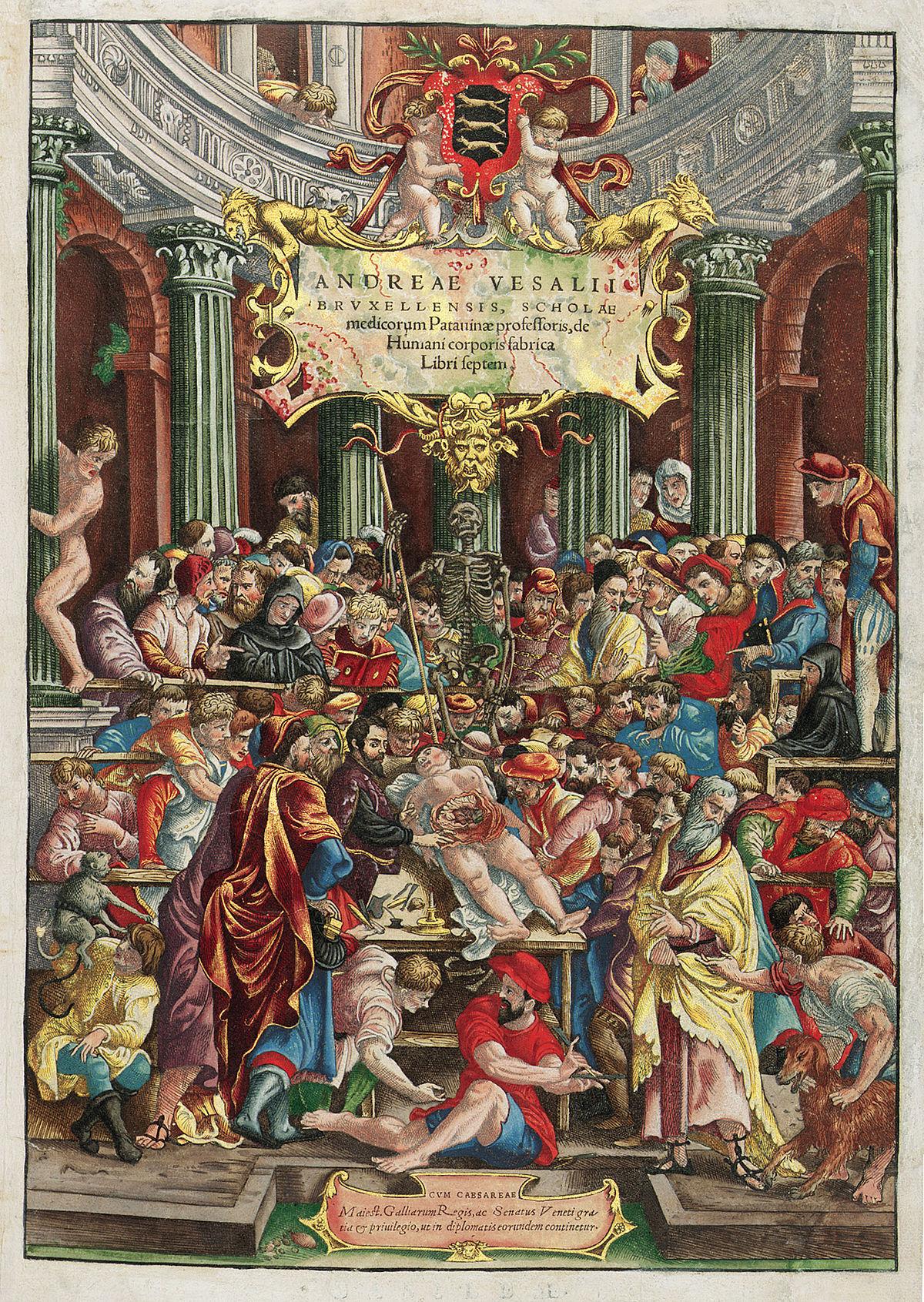 De humani corporis fabrica - Wikipedia, la enciclopedia libre