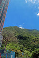Victoria Peak from Mid-levels, Hong Kong.jpg