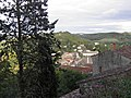 Village (Cordes-sur-Ciel) (2).jpg