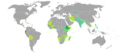 Visa requirements for Djiboutian citizens.png