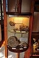Vitrine consacrée au carixien et au doménien au musée de Digne.jpg