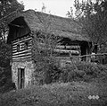 Vrhhlevna hiša, Gorenja vas 1951.jpg