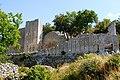 Vue générale du fort de Buoux.jpg