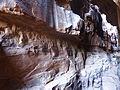 Wadi Rum-Pétroglyphes (1).jpg