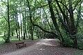 Walk along the Thiou river @ Annecy (35605739156).jpg