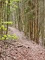 Wanderweg bei Neulautern - panoramio.jpg