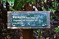 Waxmyrtle interpretive sign in Umpqua Lighthouse State Park.jpg
