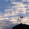 Weather vane, Faulston Farm - geograph.org.uk - 708653.jpg