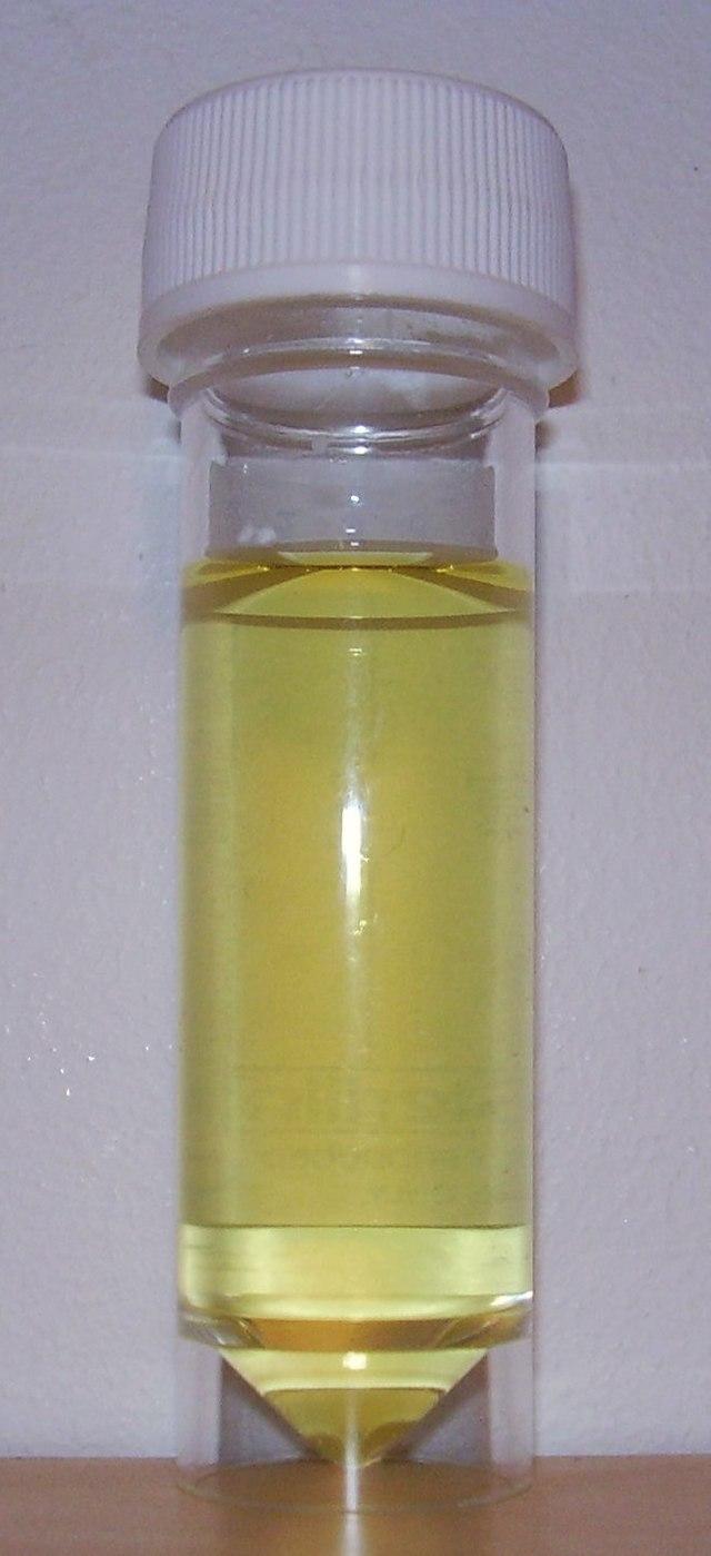 koncentreret urin