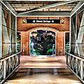 Welcome to Disney Springs (27119254604).jpg