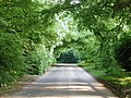 Welton Top - geograph.org.uk - 829542.jpg