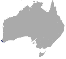 Western Ringtail Possum area.png