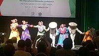 Wikimania 2015 opening ceremony ovedc 15.jpg