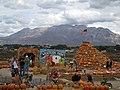 Wilkerson Farm in Orem, Utah - panoramio.jpg