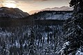 Winter- Dawn from Government Hill (6756817653).jpg