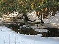 Winter Stream, Elora Gorge - panoramio.jpg