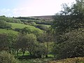 Withypool, pasture below Withypool Hill - geograph.org.uk - 875657.jpg
