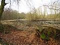 Wolbecker Tiergarten (7).JPG
