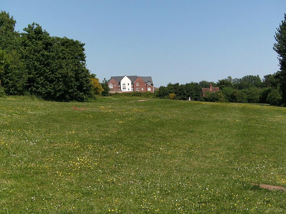 Wombourne Ham Meadow