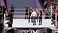 WrestleMania 31 2015-03-29 18-51-53 ILCE-6000 9011 DxO (17493879694).jpg