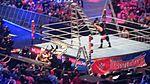 WrestleMania 32 2016-04-03 18-24-59 DSC-HX90V 3454 DxO (27226607423).jpg