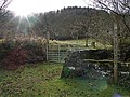 Wye Valley Walk - geograph.org.uk - 1128803.jpg