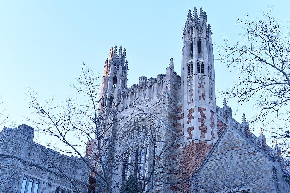 Yale MMI