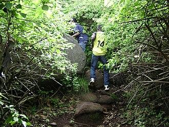 Yelagiri - Trekking at Yelagiri