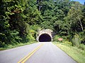 Young Pisgah Ridge Tunnel.jpg