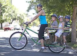 Yuba Mundo Cargo Bike with Monkey Bars.jpg