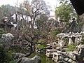 Yuyuan 01.jpg