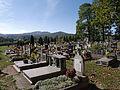 Założenie cmentarne.JPG