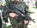 Zastava M21 rifle with corner display.jpg