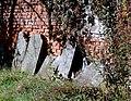 Zduńska Wola, Kacza 18, Cmentarz żydowski-006.JPG