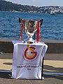 Ziraat Türkiye Kupası 2018-2019.jpg
