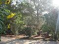 Zona de descanso Ecoherbes Park.JPG