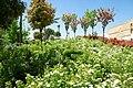 ® MADRID VERDE JARDIN SAN FRANCISCO EL GRANDE - panoramio - Concepcion AMAT ORTA… (19).jpg