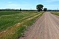 Вид с дороги на Ковыловку в западном направлении - panoramio.jpg