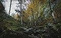 Мурадымовское ущелье, Бурзянский район 06.jpg