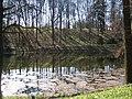Озеро Краснокутсикй дендропарк.JPG