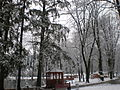 Парк 53.JPG