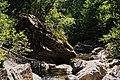 Потік Апшинець, Чорнотисянське лісництво - 2.jpg