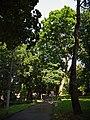 Рівненський парк культури і відпочинку ім. Т. Г. Шевченка P1080193.jpg
