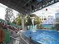 Сочинский дельфинарий парка «Ривьера». 77.jpg