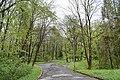 Трускавецький парк 15.jpg