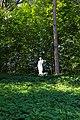 Умань, «Софіївка», Статуя Меркурія.jpg
