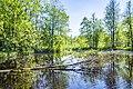 Черное озеро01.jpg